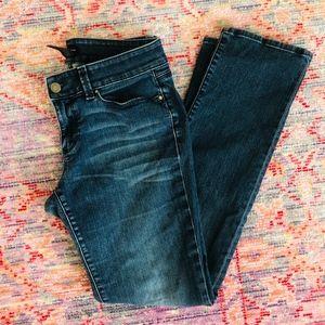 Ann Taylor Modern Jeans - Size 6P - EUC